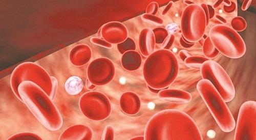 bệnh thiếu máu