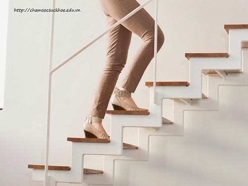 leo cầu thang có tác dụng gì
